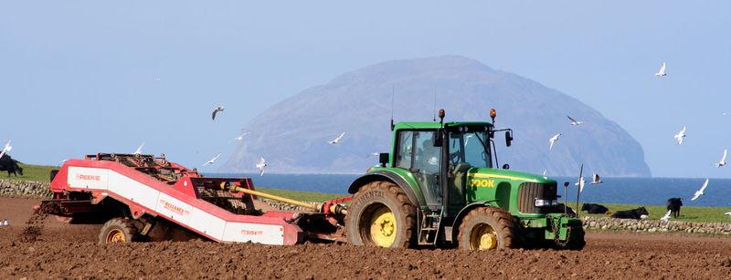 Local-farming